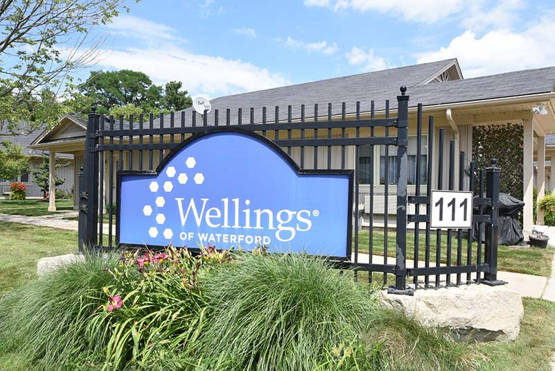 Welcome to Wellings